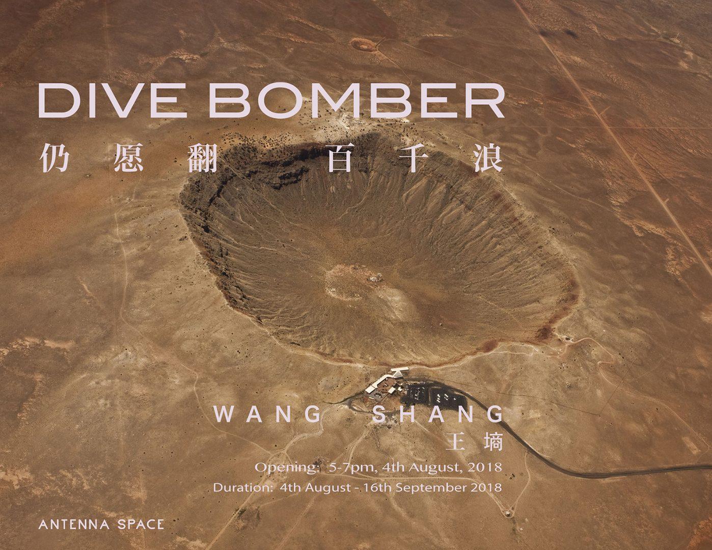 Wang Shang:Dive Bomber