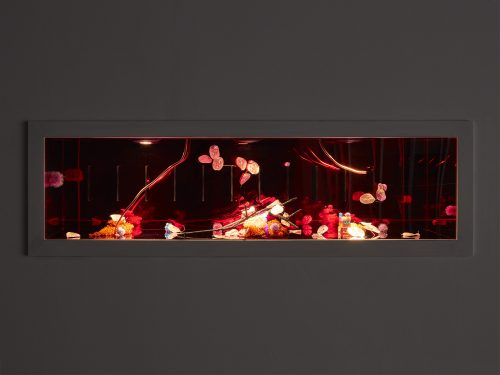 Ajay Kurian: 舒适区 6 (网格和间歇泉)
